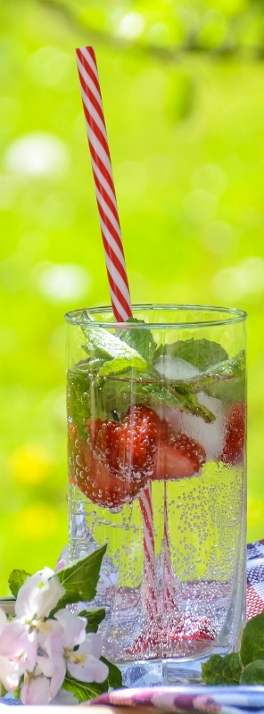 Fruit Infusions Combination